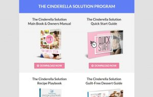 Cinderella Solution program